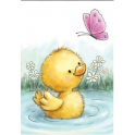 Wild Rose Studio`s A7 stamp set Little Duck CL513